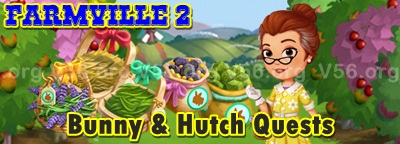 Bunny and Hutch Quests