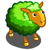 Evergreen Sheep