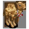 Tattooed Camel