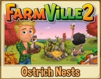 Ostrich Nests Guide