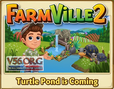FV 2 Turtle Pond