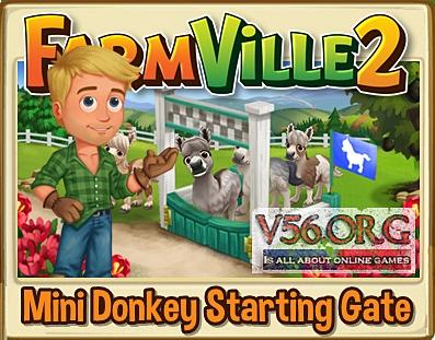 Mini Donkey Starting Gate